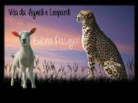 Vita di Agnelli e Leopardi